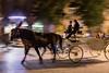 The horse carriage, Krakow, Poland