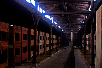 Sleeping barracks at Birkenau.