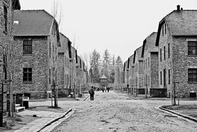 Auschwitz12_17