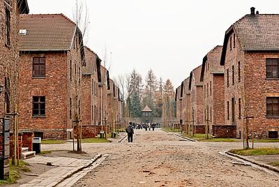 Auschwitz12_16