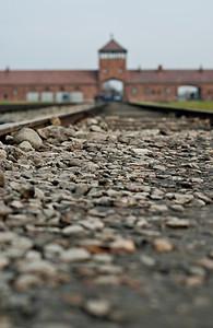 Auschwitz12_31