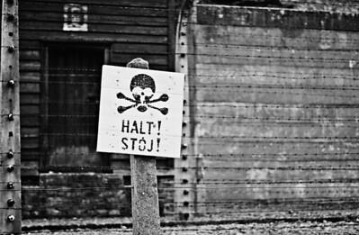 Auschwitz12_11