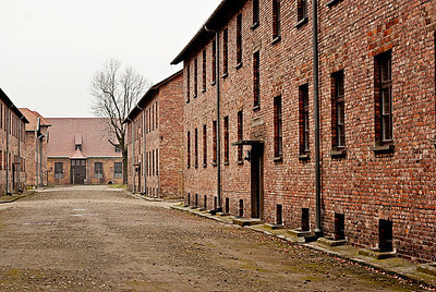 Auschwitz12_15