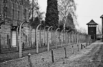 Auschwitz12_13