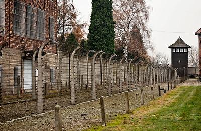 Auschwitz12_12