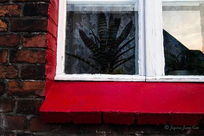 Nikiszowiec Window