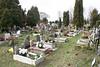Children's graves