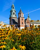 "OAT Trip/Poland-Lithuania-Latvia-Estonia-Russia/13 Sep-02 Oct 2016.  Krakow.  Wawel Cathedral.  <br /> <a href=""https://en.wikipedia.org/wiki/Wawel_Cathedral"">https://en.wikipedia.org/wiki/Wawel_Cathedral</a>"
