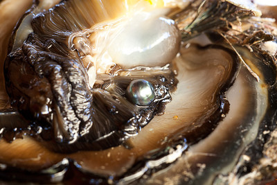 CAD34921- allevamento di perle nere a Marae Kamoka