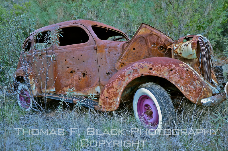 This and 17 frames following, 1930s Pontiac riddled with bullet holes, recalling 1930s Ford gangsters Bonnie and Clyde were killed in. [UFP011212]