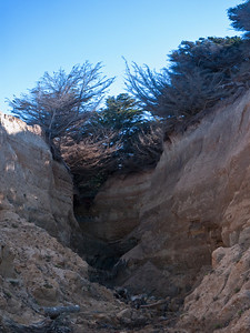 Looking up from the beach and into a small canyon.