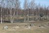 Pori, Finland  (Apr. 2018)