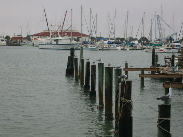 Another picture of the marina.