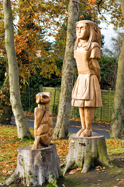Alice and the turtle wooden sculpture in Chambers Park, Portadown, Northern Ireland