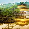 """The fabulous pavilion at Kinkaku-ji (金閣寺), it's gold-leaf outer layer shining in the sun"". <br /> 雨中游金閣, Kinkaku-ji, Kyoto, Japan."