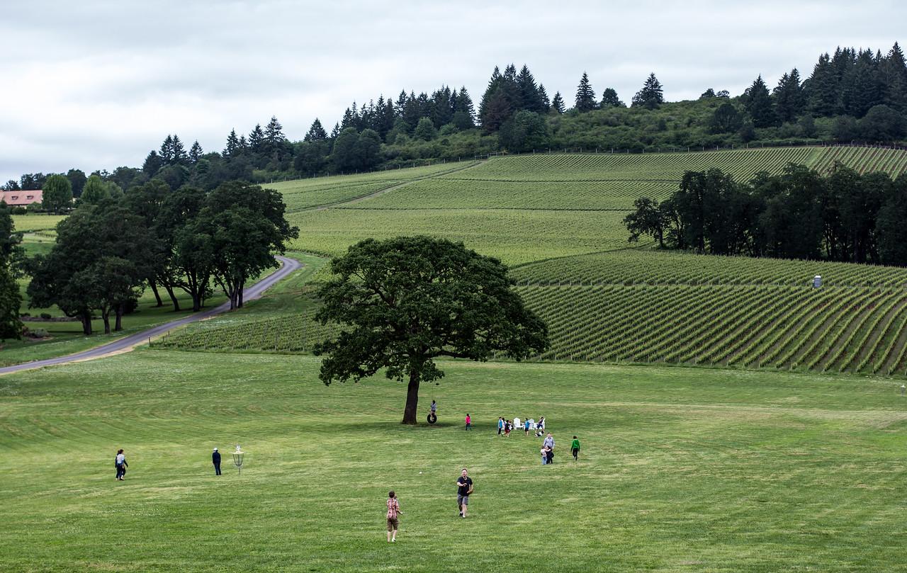 IMAGE: https://photos.smugmug.com/Travel/Portland-2014/i-fvWpDH6/0/d67e2ca2/X2/IMG_8978-X2.jpg