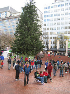 X'mas tree at the downtonw of Portland