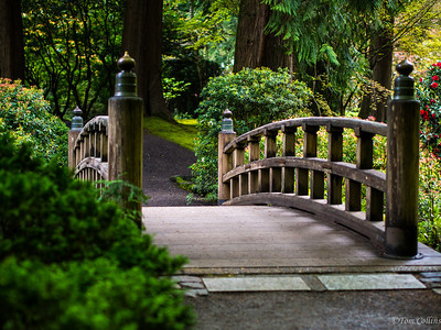 Foot bridge in the Japanese Gardens in Washington Park west of Portland, Oregon.
