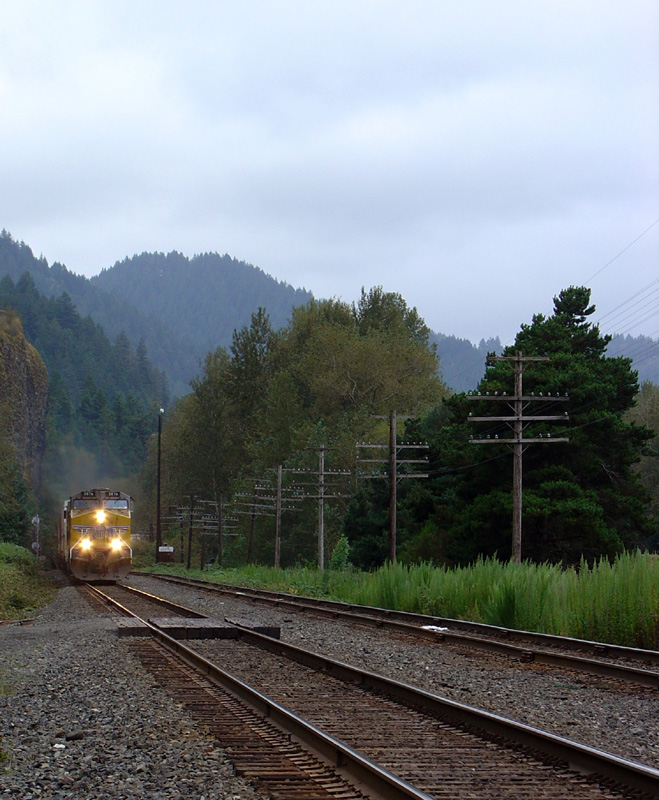 a train passes by right next to SR.30 on the way to Multnomah falls