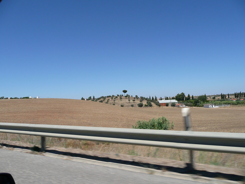 On our way to Evora onJuly 18th which is in the Alentejo region.