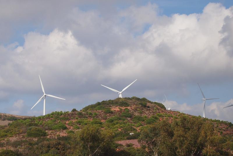 Wind generator farm