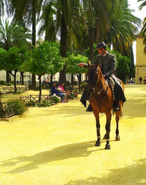 Cordoban horseman early in the morning.