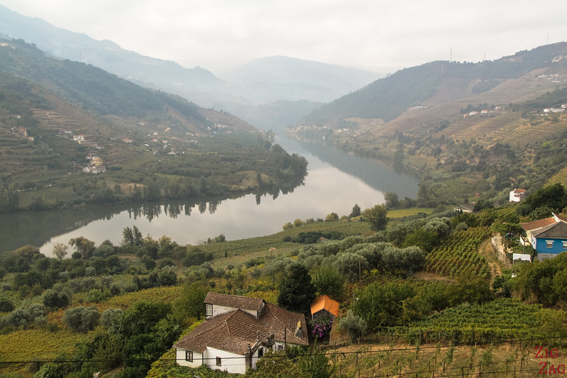 What to do in Portugal - Douro Valley