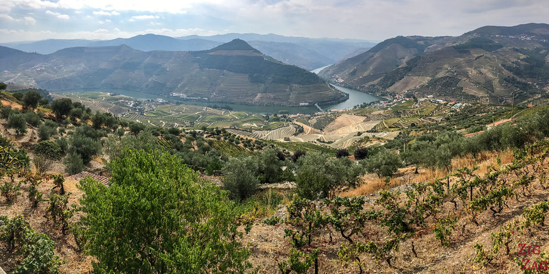 Que voir au Portugal - Best Views in Portugal - Douro Valley