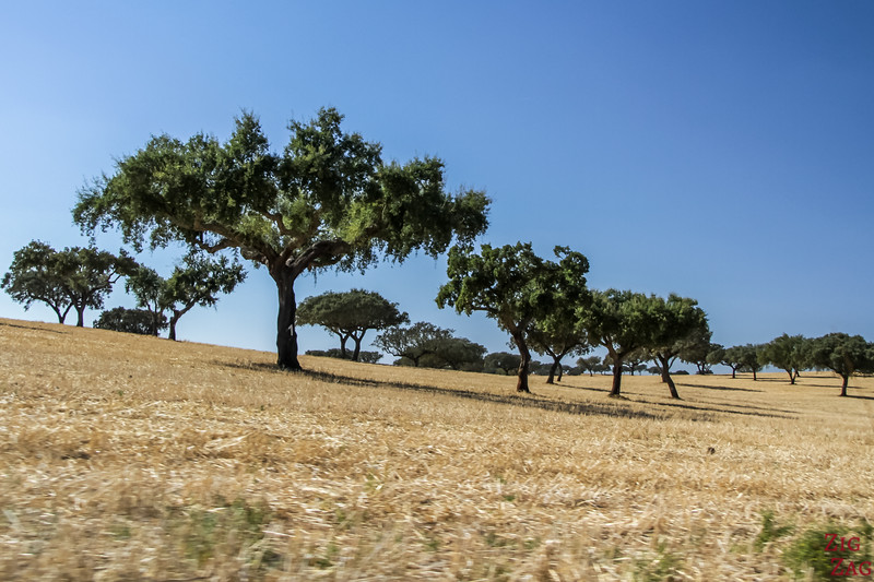 Driving in Alentejo POrtugal