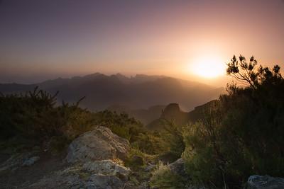 Paul da Serra, Madeira
