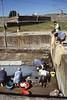 022  Viana do Costello, Castelo Santiaga da Barro, vrouwen doen de was