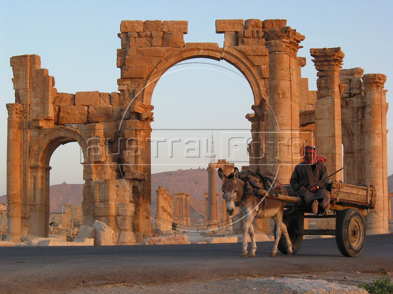 A man rides a donkey cart past the monumental arch of the 2nd century ruins of Palmyra, Syria's most important tourist attraction, in the Syrian Desert. As a Roman colony on the eastern border of the empire, the city prospered from caravans on the old silk road, which stopped at the nearby oasis.(Australfoto/Douglas Engle)