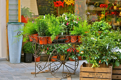 April 26, 2012. Flower Cart.  Arles, France.