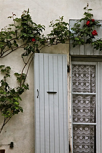 Shuttered window and climbing roses. Tournon, France.