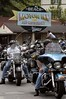 Motorcyclists gather at a restaurant in Lake Lure, North Carolina. Motorcycling has become hugely popular in the US, as sales of new bikes have more than doubled from 1990 to 2000. (Australfoto/Douglas Engle)
