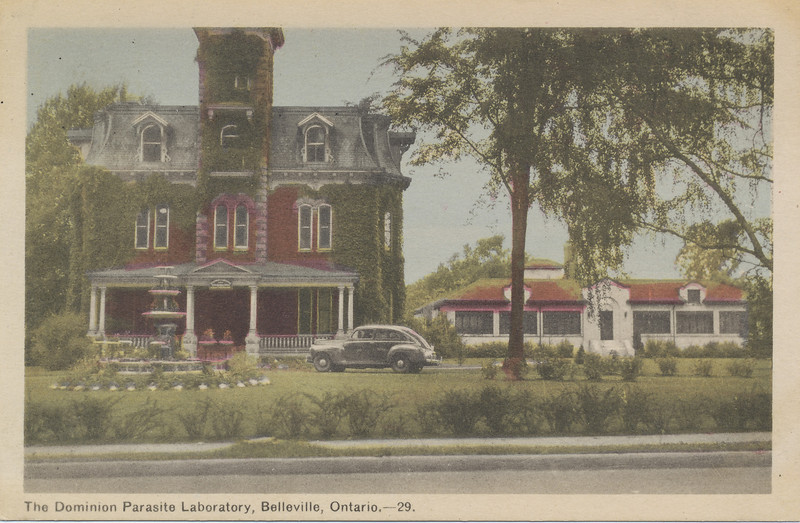 Postcard: The Dominion Parasite Laboratory, Belleville, Ontario. Showing original house at left and single story building at right. Not mailed.