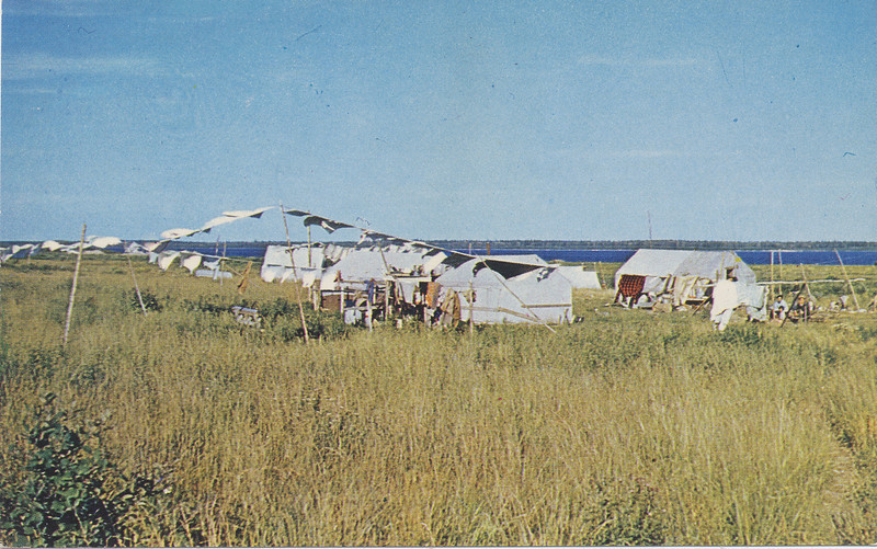 """Postcard: """"Encampment of Cree Indians at Moose Factory on james Bay, end of steel for the Ontario Northland Railway which serves all communities north of North Bay"""". ONR photo. Published by Wm R. Forder, North Bay."""