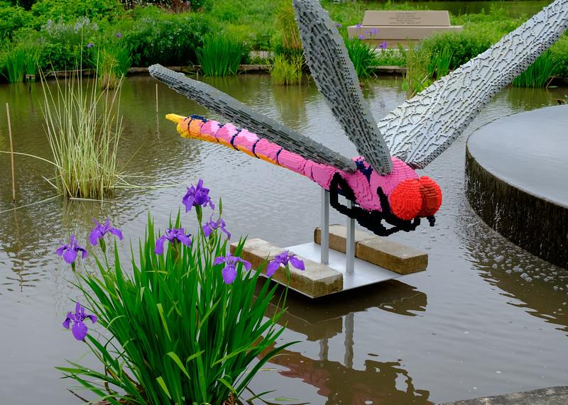 legos_dragonfly-5038