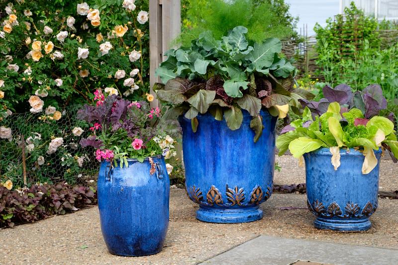 blue_pots-5032