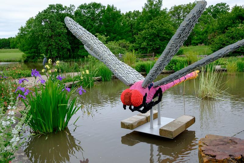 legos_dragonfly-5039