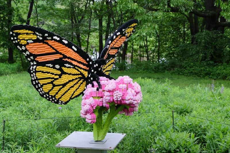 legos_butterfly-5041