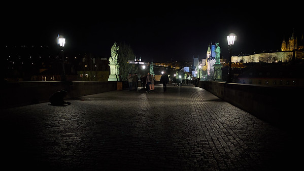 Charles bridge. Prague spring 2017 . Prague by night