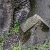 Jewish Cemetery