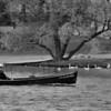 Boat On The Moldawa