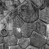 Moldawa Wall