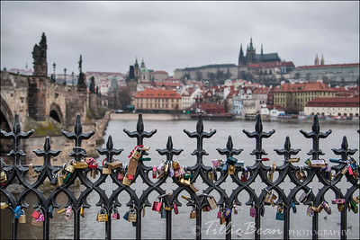 Prague - Charles Bridge and Castle
