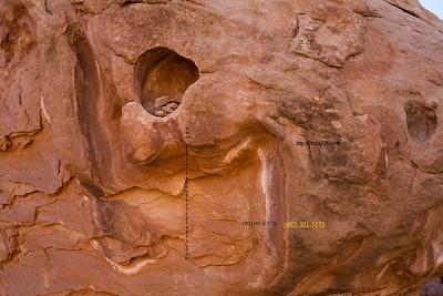_N9A8877 Rock_cliff Dwellers AZ