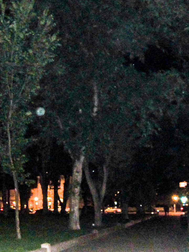 Ghost orbs in trees