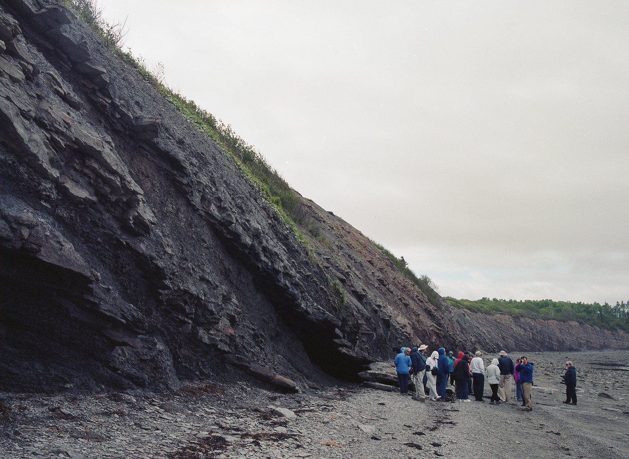 Guided tour along the shore of Bay of Fundy