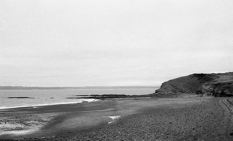 Joggins Beach